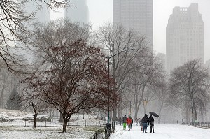 BALADE EN FAMILLE, CENTRAL PARK UN JOUR DE NEIGE, MANHATTAN, NEW-YORK, ETATS-UNIS, USA