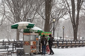 STAND AMBULANT DE HOT DOG ET FRIANDISES, CENTRAL PARK UN JOUR DE NEIGE, MANHATTAN, NEW-YORK, ETATS-UNIS, USA