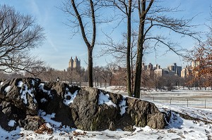 CENTRAL PARK, UN JOUR DE NEIGE, MANHATTAN, NEW-YORK, ETATS-UNIS, USA