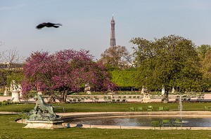JARDIN DES TUILERIES, 1ER ARRONDISSEMENT, PARIS, FRANCE